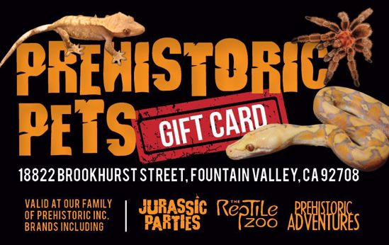 Prehistoric Gift Card